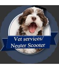 Dog Adoption Events Maryland Petco
