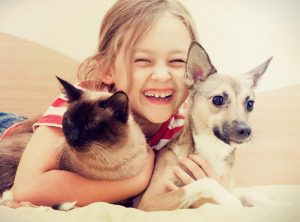 Adopt A Dog or Cat   Last Chance Animal Rescue